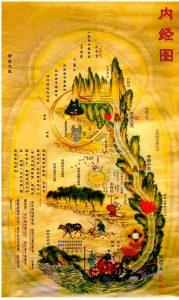 coloured-neijing-tu-najdi-svoj-potencial